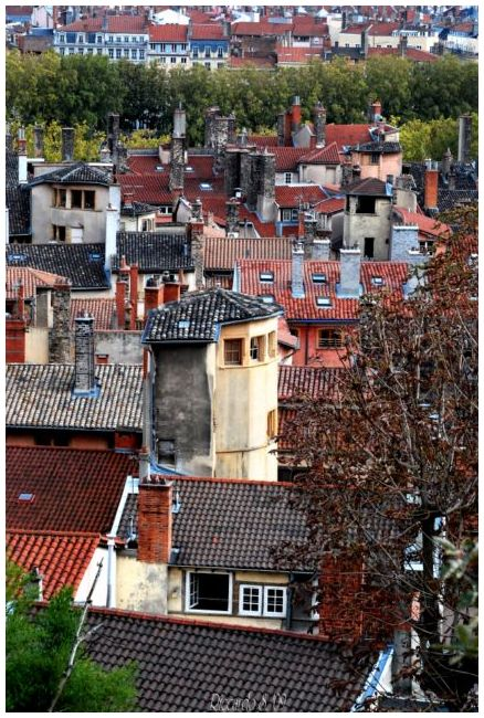 Lyon en perspective - Vol. I -