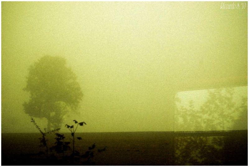 A window mist