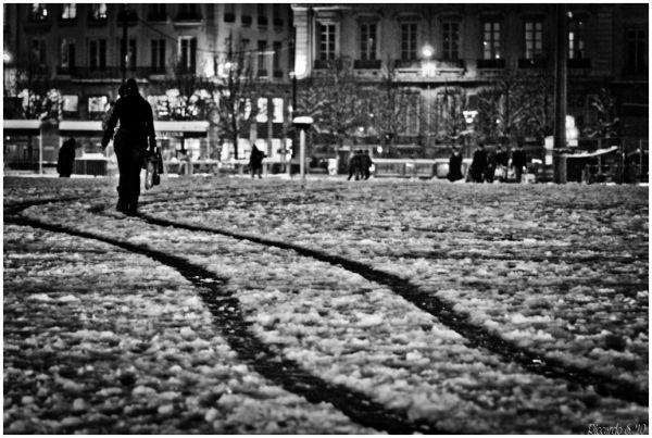 Promenade dans la neige