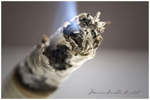 FUMATE UN CANCER