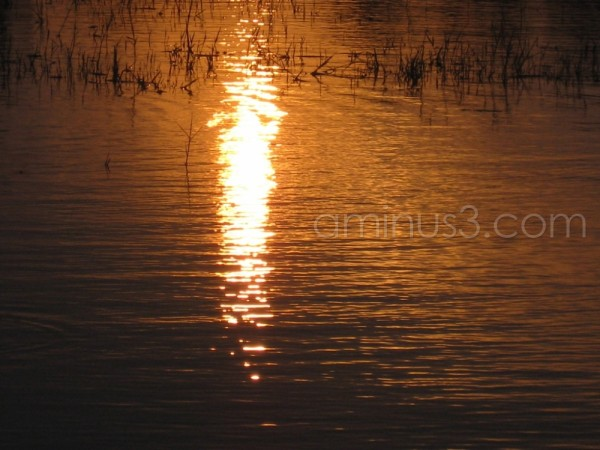 Lake View of  Sunset