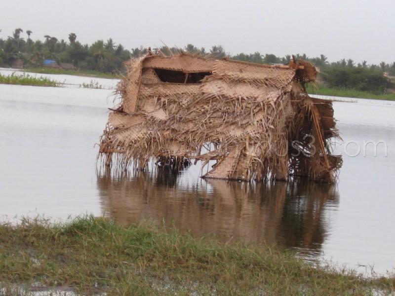 Hut in Lake
