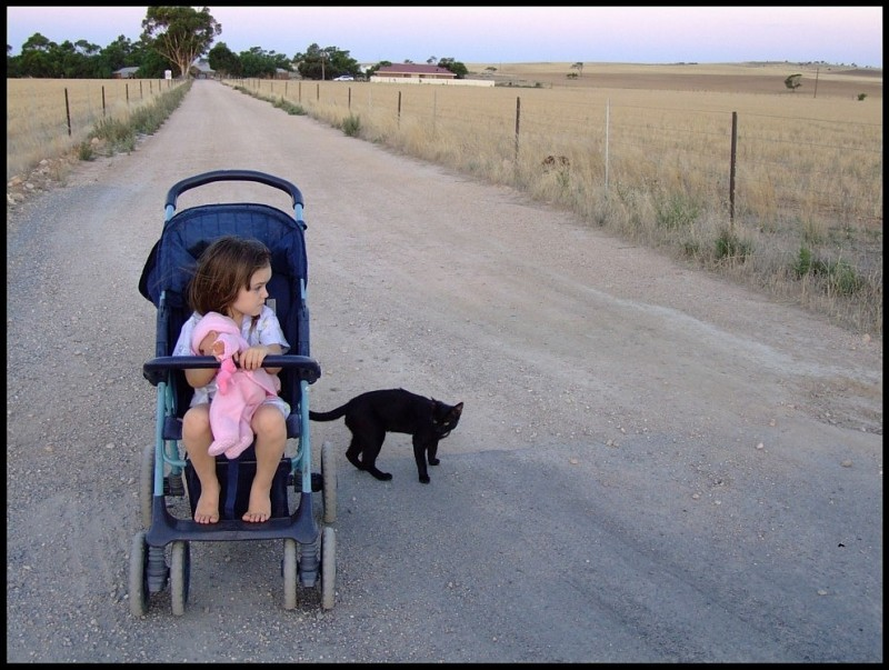 child in stroller at farm