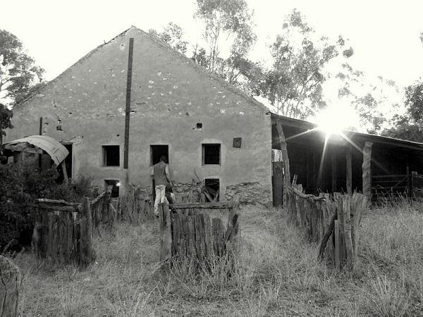 Abandoned shearing shed 2