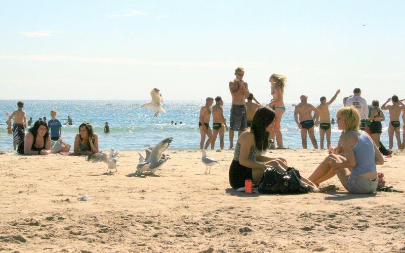 Glenelg beachscene (glenelg 7)