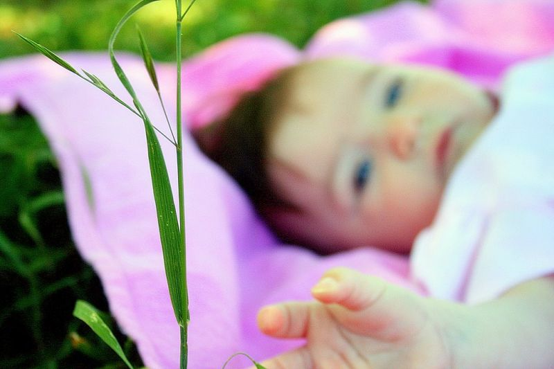 Just laying in the grass