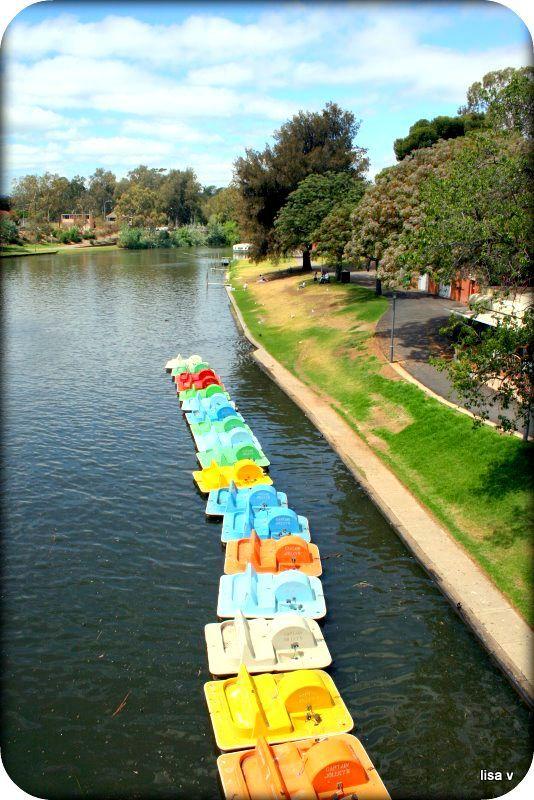Torrens River 2