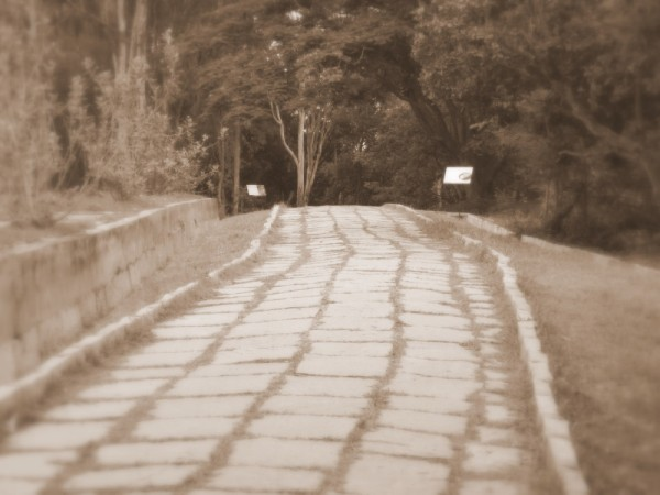 The unknown road ahead..