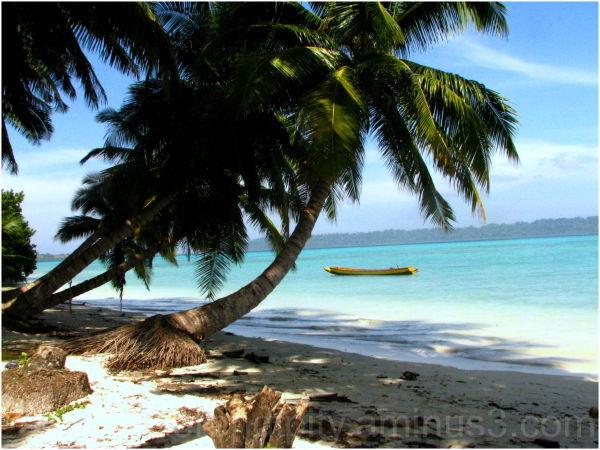 A dreamy shore!