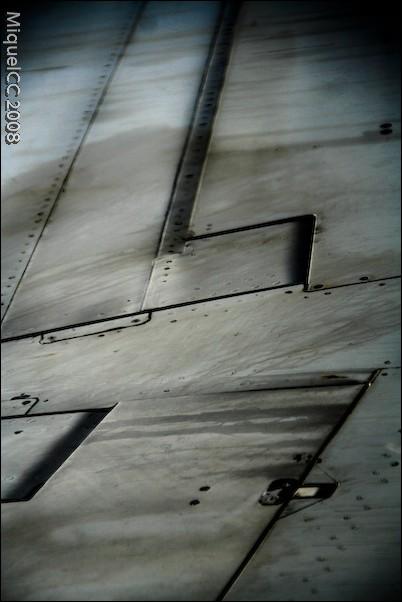 Ala / Wing