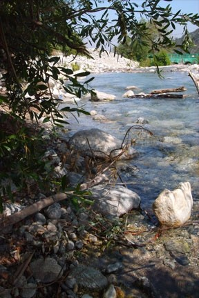 peaceful scene in Lytle Creek, California