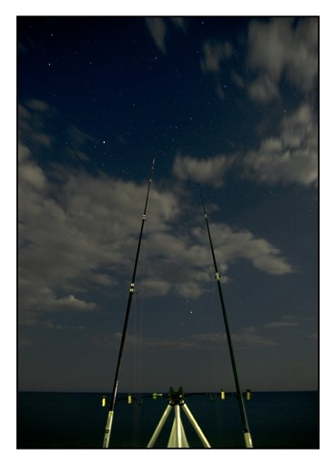 Fishing at the night