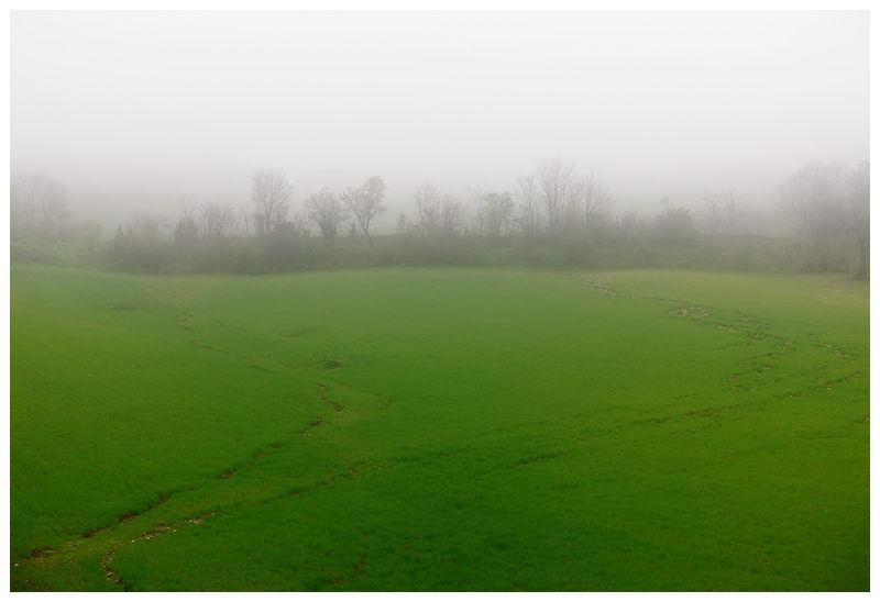 Misty Limit