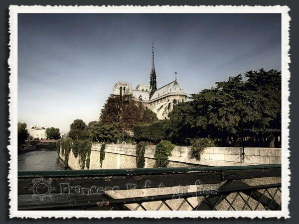 Notre-Dame (Aminus3 - Paris)