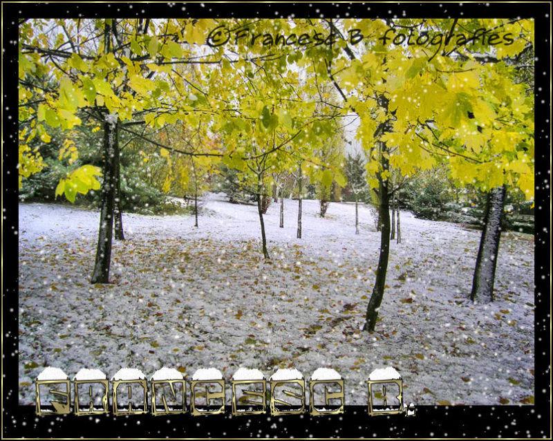 Neige en automne