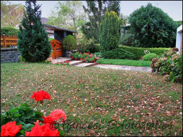 Automne au jardin
