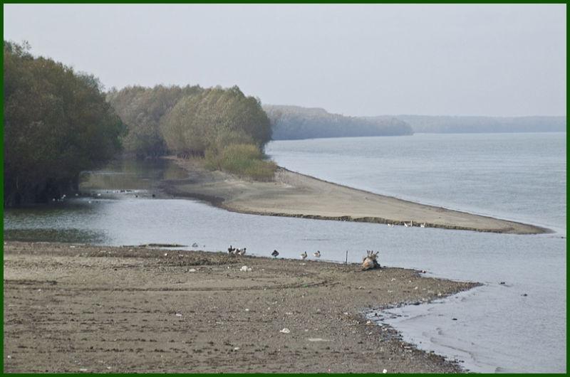 autumn: The Danube at Rasova