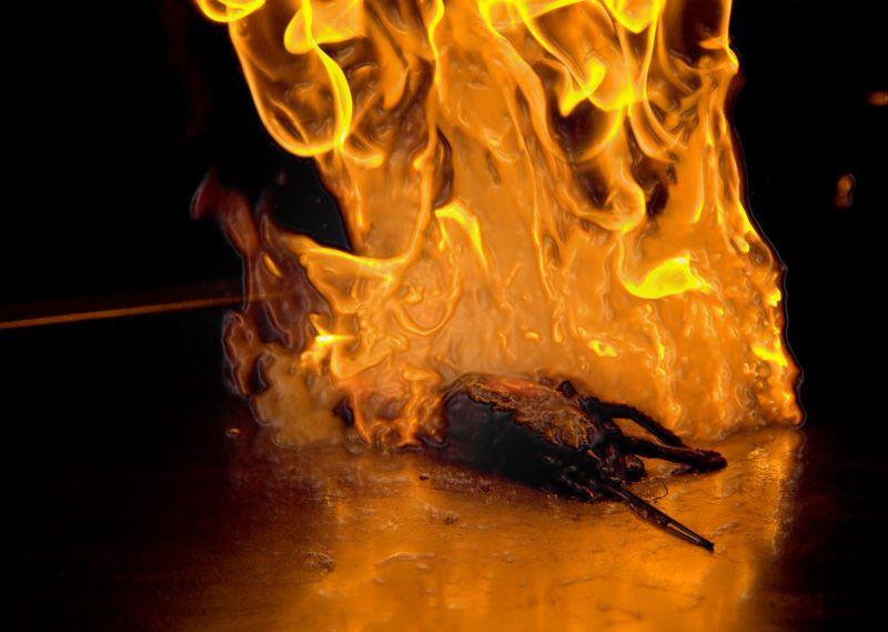 food langouste flambee