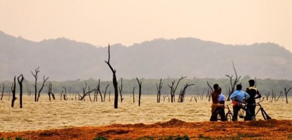 Panorama of Amaya Lake, Dambula, Sri Lanka