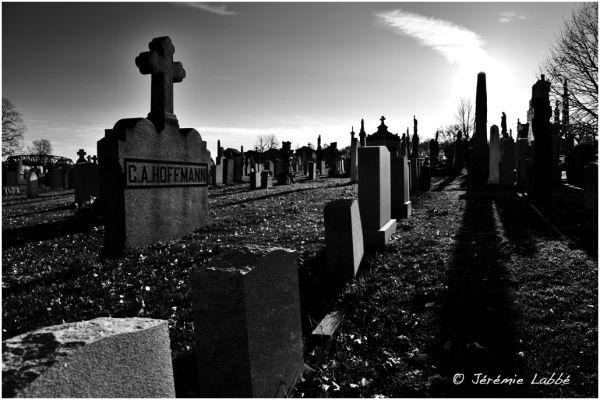 Calvary Cemetery, Queens, New York