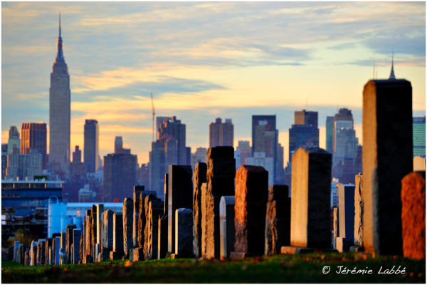 Calvary Cemetery with Manhattan skyline, New York