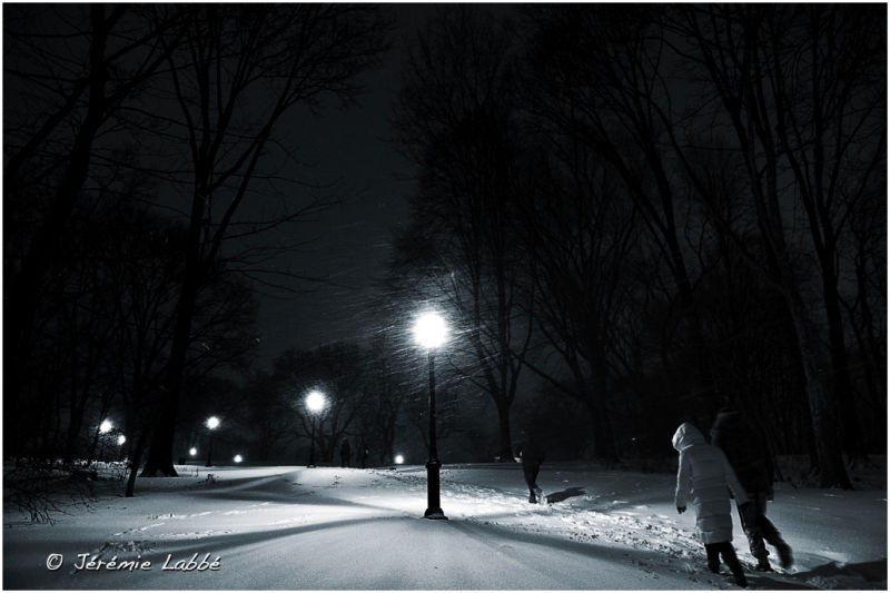 Night walk in snow-covered Central Park, New York
