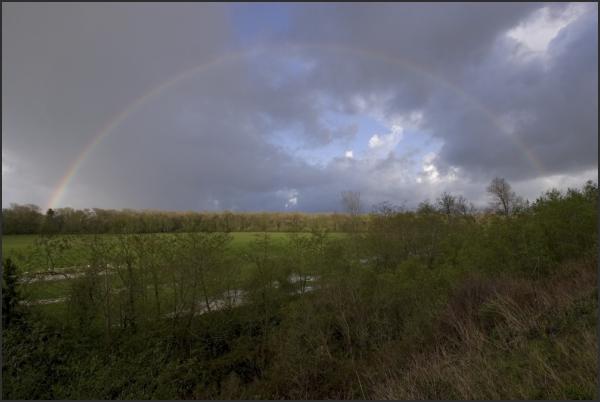 A rainbow over a meadow near Loleta, California