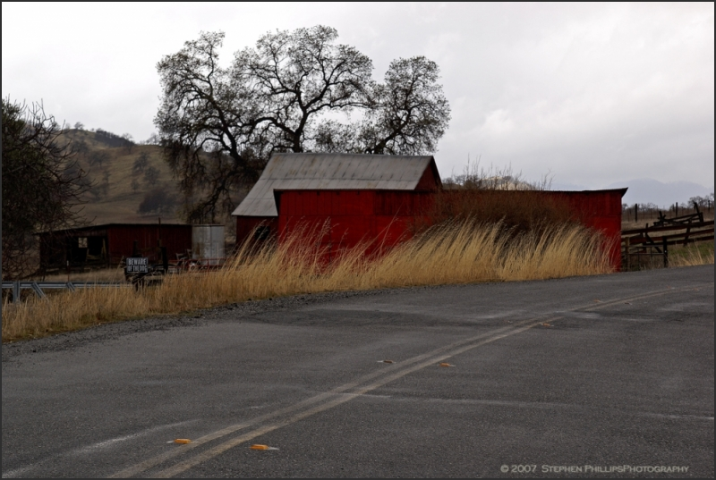 Red Barn at Black Butte