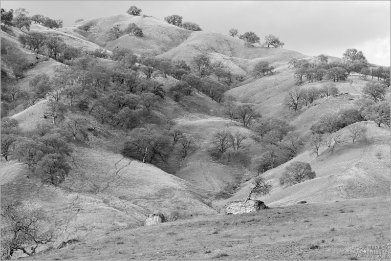 Yolo County Hillside in winter