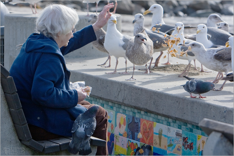 a woman feeding birds in Capitola