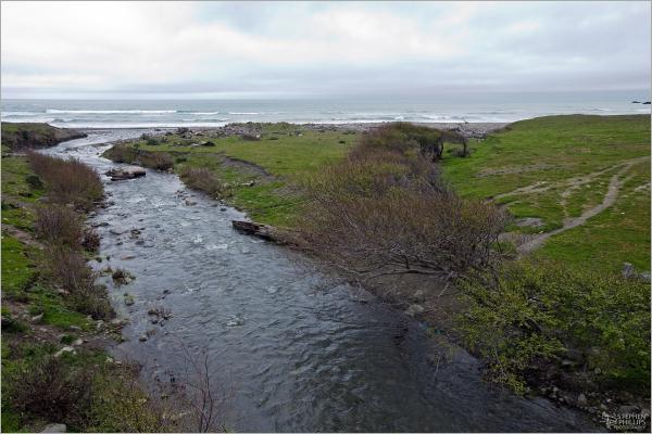 Davis Creek along the Lost Coast of California