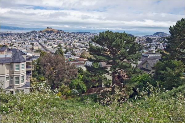 upper Noe Valley in San Francisco