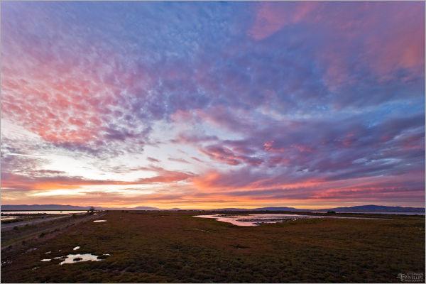 Napa river sunset