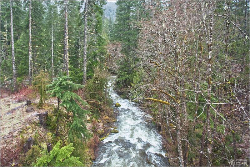 McCoy Creek in the Santiam Valley Oregon