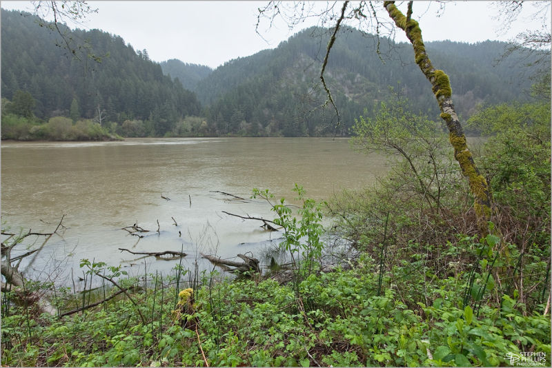 rainy day along the lower Umpqua River