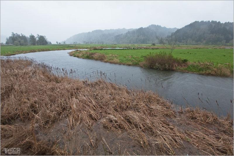 Koepke Slough along Umpqua River Oregon