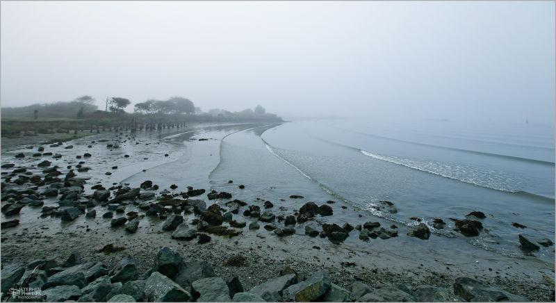 Dense Fog on Humboldt Bay