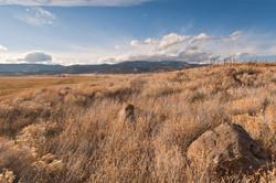 A hillside at  Gazelle California Siskiyou-County