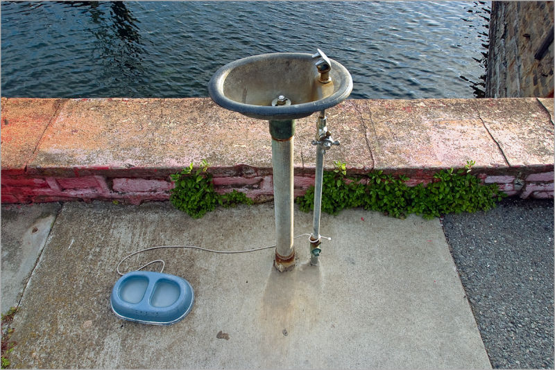 Water fountain and dish