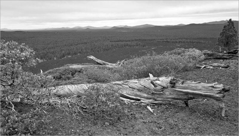 view from the Lava Butte caldera rim, Bend, Oregon