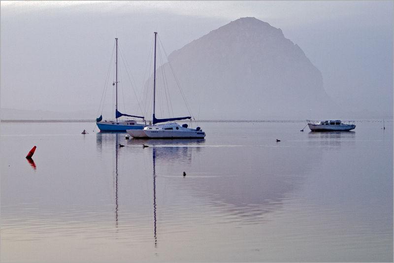 Boats moored at Morro Bay,California
