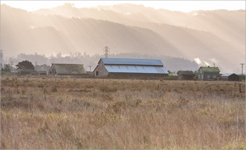 Arcata farm at sunrise