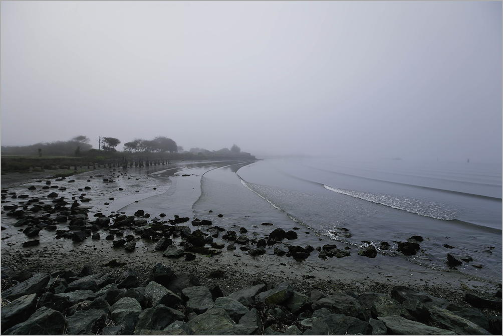 Foggy dawn on Humboldt Bay - Eureka, california