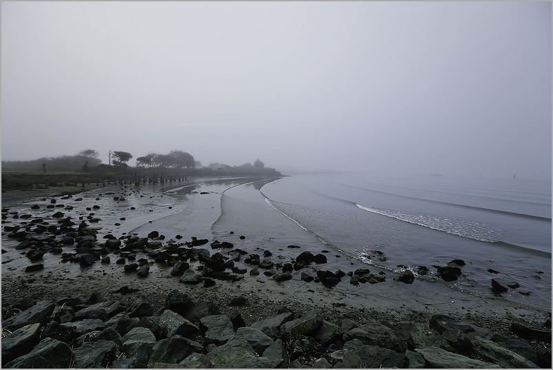 Foggy dawn on Humboldt Bay - Eureka, california