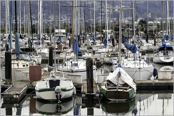 Berkeley Marina California yachts harbor boats