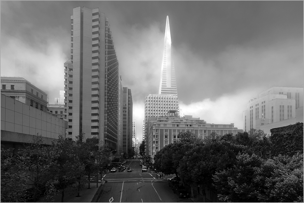 Classic Foggy San Francisco Morning