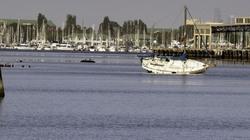 Navigational Error Sailboat Aground