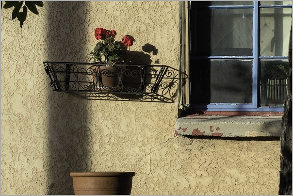 Flower Box in Chimayo, New Mexico