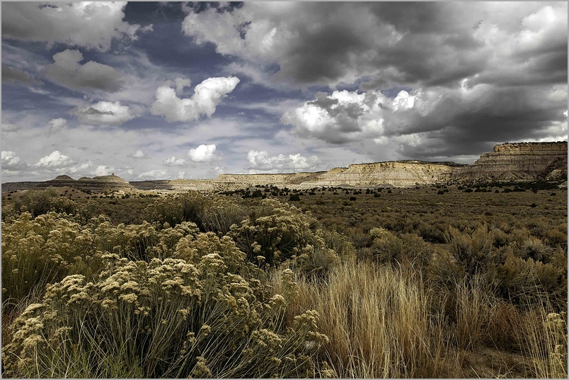 Gathering Storm Clouds in Central New Mexico