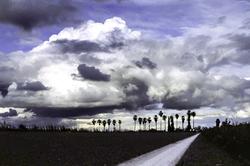 Storm in The Sacramento Delta
